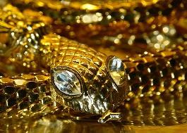 Золотая змея